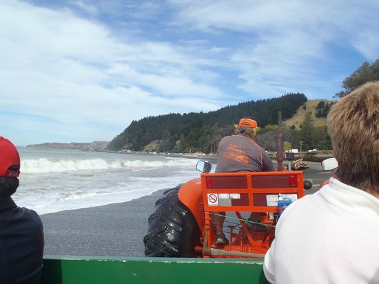 Gannet Beach Adventures : Looking towards the open beach from the behind the tractor
