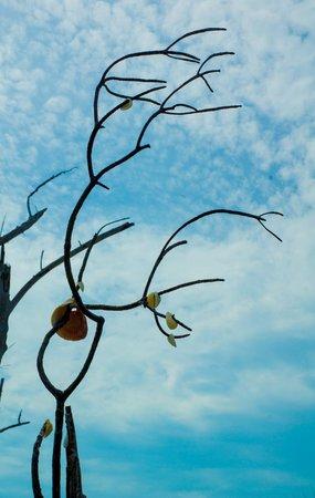 Englewood Beach: Driftwood City Englewood, FL