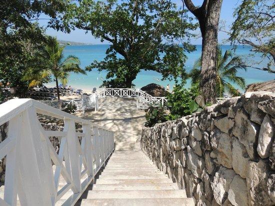 Grand Palladium Jamaica Resort & Spa: Camino hacia la playa mas hermosa que haya visto