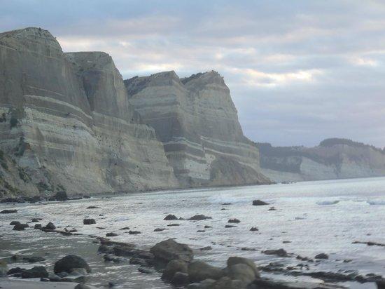 Gannet Beach Adventures: View of Gannet Beach near Cape Kidnappers