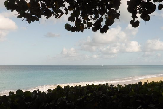 Keyonna Beach Resort Antigua: View from the restaurant