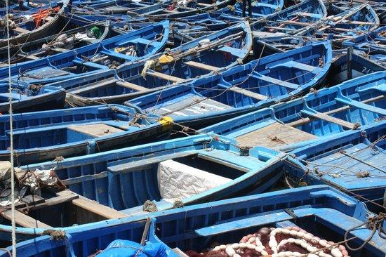 Médina d'Essaouira : Essaouira Fishing Port