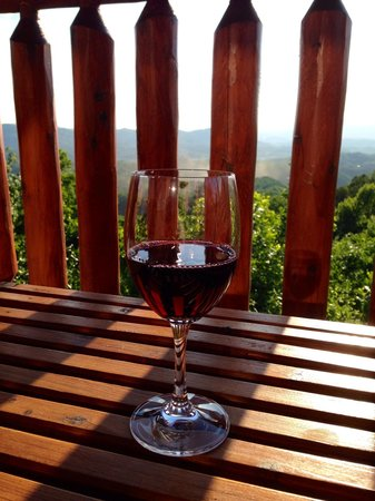 Starr Crest Resort: Wine on the deck facing mountains
