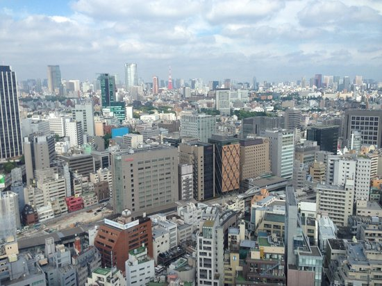 Cerulean Tower Tokyu Hotel: Great view