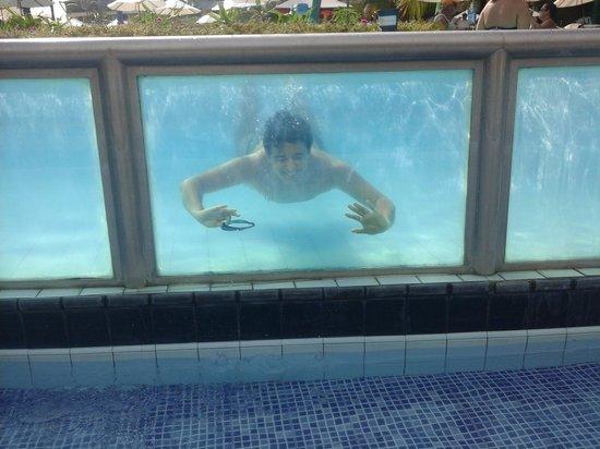 Marulhos Suítes Resort: piscina do bar molhado