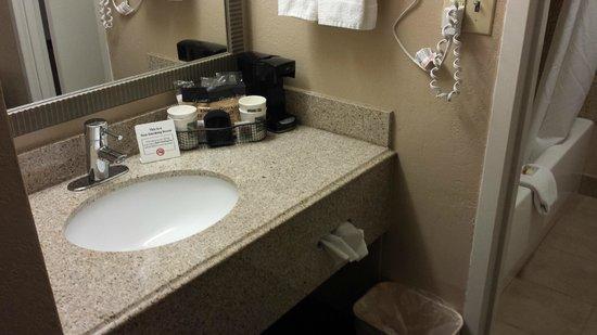 Quality Inn & Suites of Battle Creek : washroom