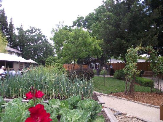 Addendum at Ad Hoc: The grounds at Addendum