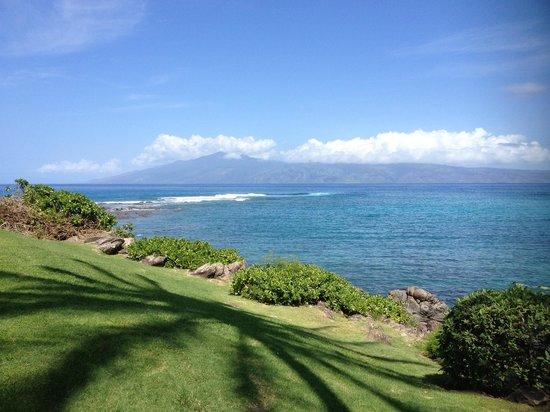 Kapalua Beach Maui Hawaii