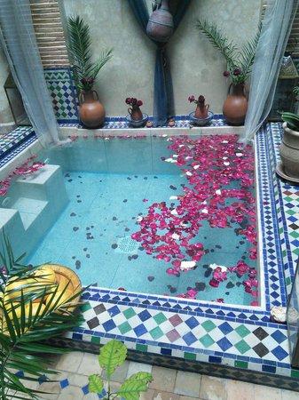 Riad Tamarrakecht: pool at riad