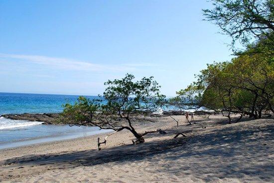 Hotel Riu Guanacaste: The Beach