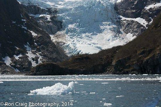 Glacier, Resurrection Bay