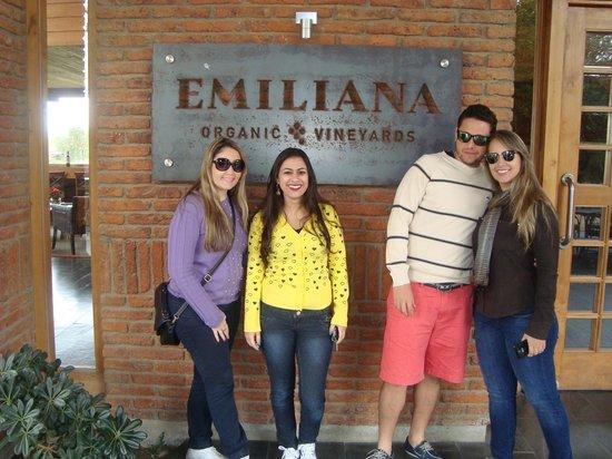 Indo Pro Chile: Vinicola Emiliana