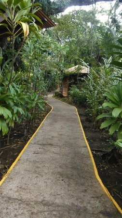 Pachira Lodge: One of the many pathways connecting the rooms