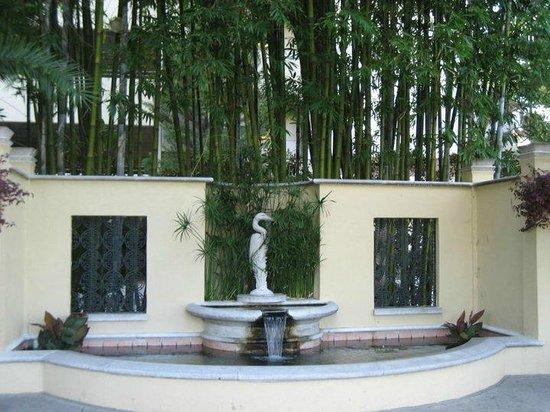 Hollis Garden: Koi Pond.