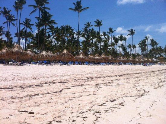 Meliá Caribe Tropical All Inclusive Beach & Golf Resort: The beach