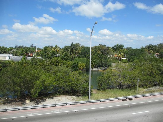 Freehand Miami: View of Indian Creek from our room