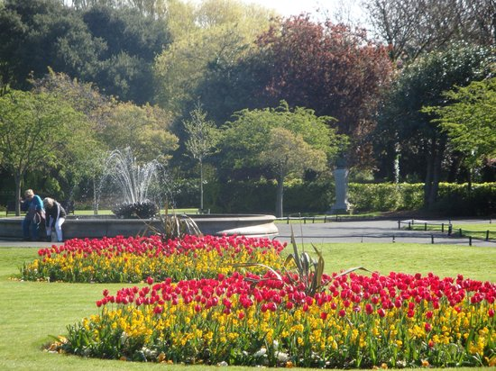 Stauntons on the Green : Flowers in Bloom