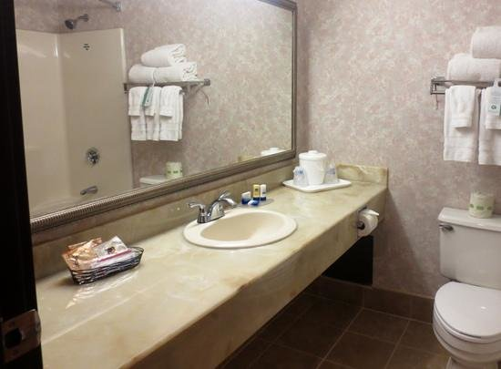 Best Western Royal Plaza Hotel & Trade Center: Bathroom vanity area