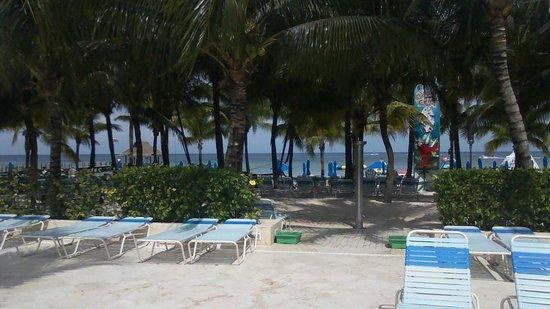 Paradise Beach: Beach