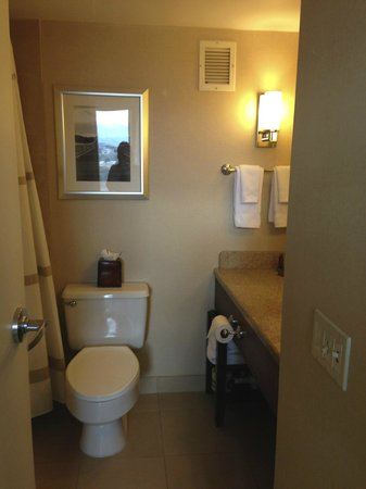 Colorado Springs Marriott : bathroom