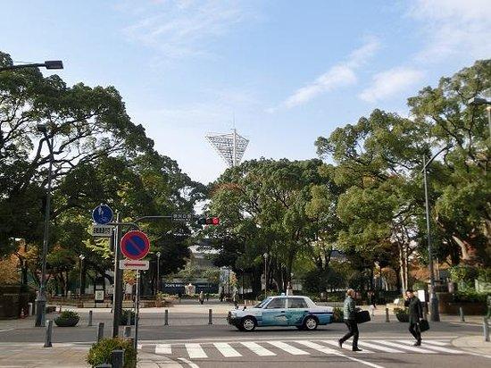 Daiwa Roynet Hotel Yokohama Koen : ホテルは、横浜スタジアムのすぐ近くにあります