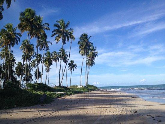 Hotel Coral Beach: Praia Divisa dos Carneiros