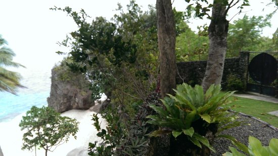 Padre Burgos Castle Resort: vegetation
