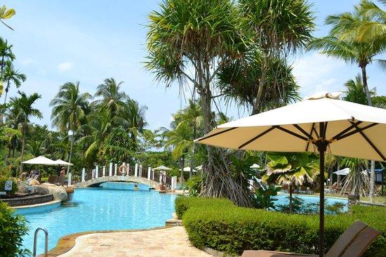 Bintan Lagoon Resort : プール