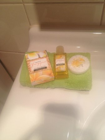 Admiral's View Lodge & Motel : Bathroom amenities