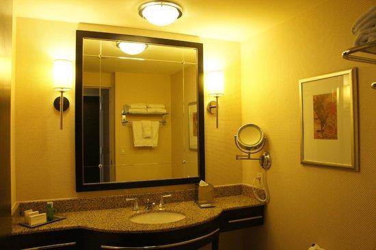 Hilton Americas - Houston: Standard king bathroom