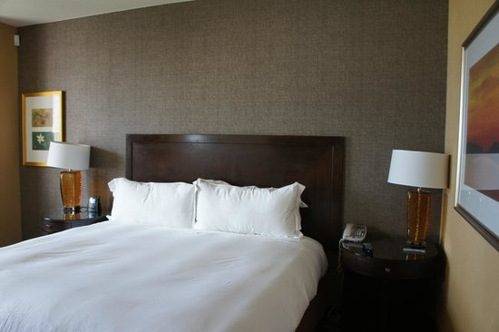 Hilton Americas - Houston: Standard king bed
