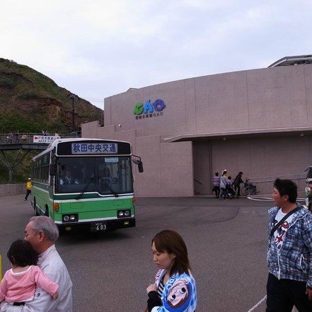Oga Aquarium Gao : 第二駐車場からはシャトルバスで