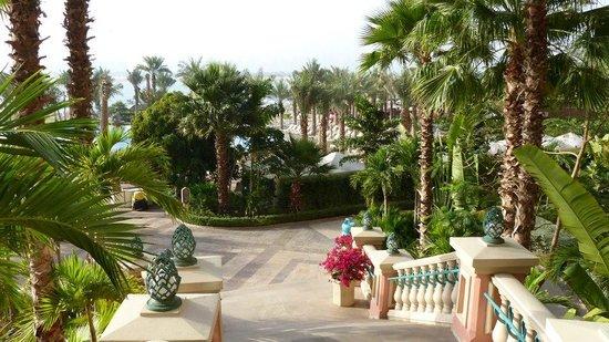 Atlantis, The Palm : Grounds