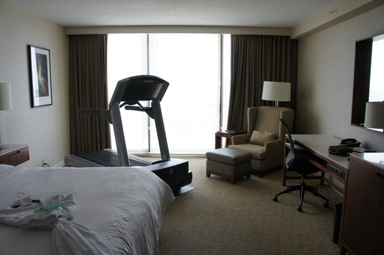 Fitness bedroom with dynamic dumb-bells and exercise ball ...