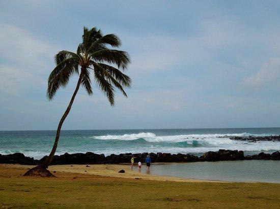 Lani Kai Island Love Songs