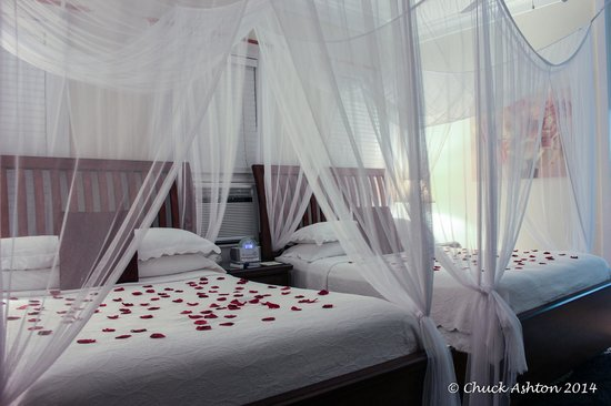 Avalon Bed and Breakfast : Our Bedroom