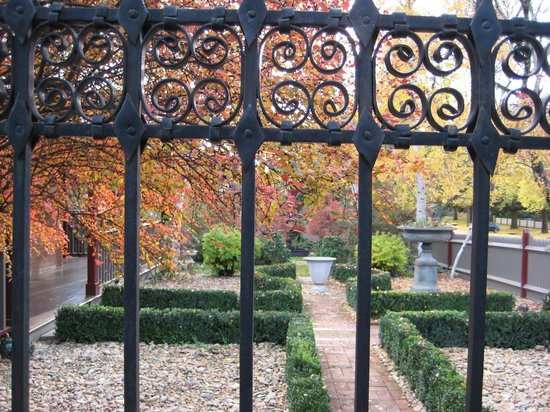 Finches of Beechworth: Finches in Autumn