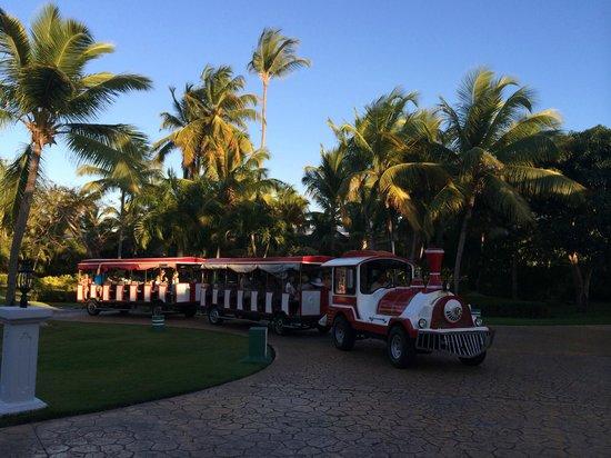 Meliá Caribe Tropical All Inclusive Beach & Golf Resort: смешные паровозики