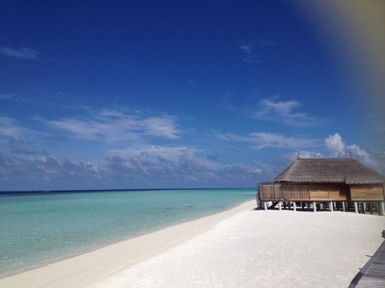 Constance Moofushi: View from beach