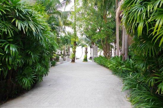 The Dewa Koh Chang : vers la plage
