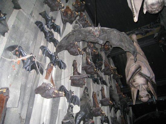Bram Stoker's Castle Dracula: Bats waiting...
