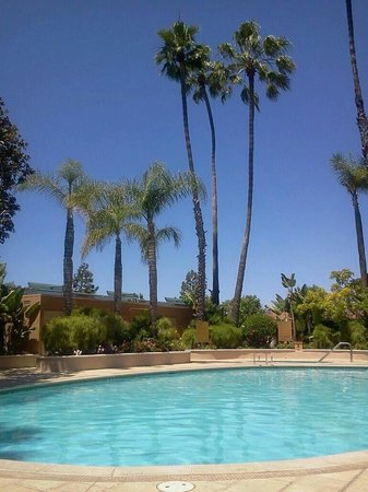 Radisson Hotel Newport Beach: Fun in the sun!!!!!!