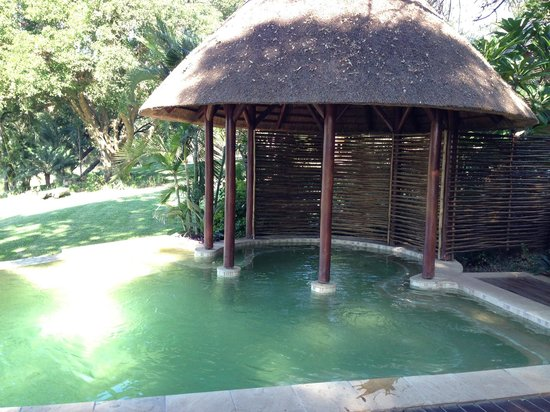 Naledi Bushcamp and Enkoveni Camp : Infinity pool overlooking the river.