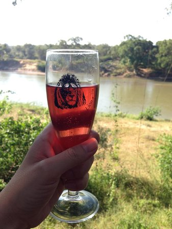 Naledi Bushcamp and Enkoveni Camp: Champagne toast to the best view ever.