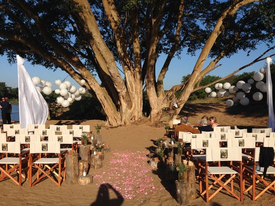 Naledi Bushcamp and Enkoveni Camp : Where the wedding ceremony took place in the bush.