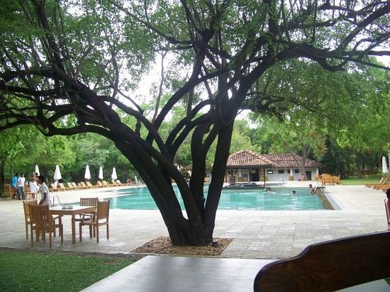 Amaya Lake: Beautiful Pool area