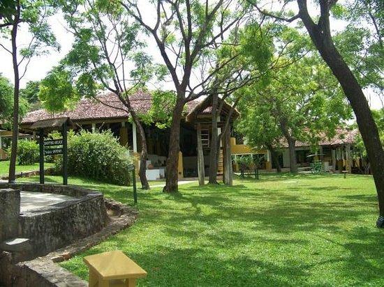Amaya Lake: Reception area