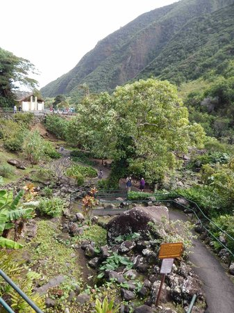 Iao Valley State Monument: Breathtaking!