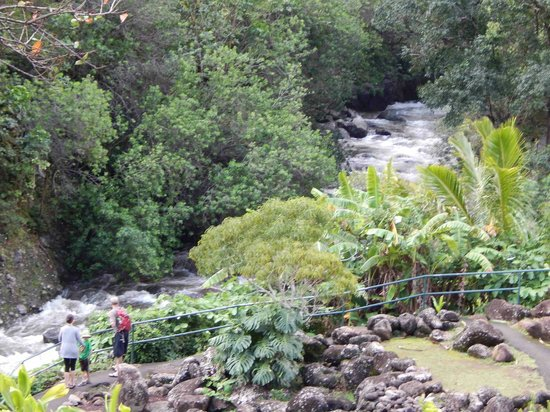 Iao Valley State Monument: Untouched Beauty
