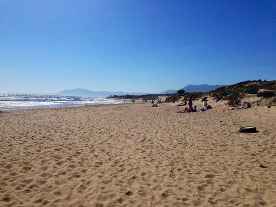 Puerto Cabopino Beach and Marina: Cabopino
